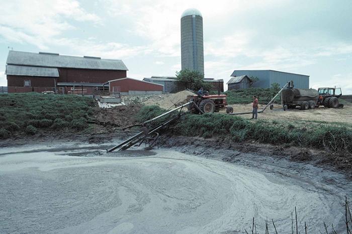 dairy-farm-manure-pit