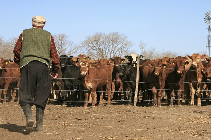 Farmer_and_the_Livestock_(6139558944)[1]